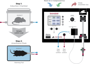 SomnoSuite system layout