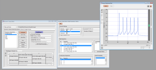 Dynamic Clamp Interface