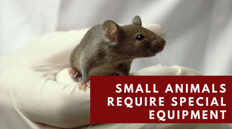 Small animals require special equipment